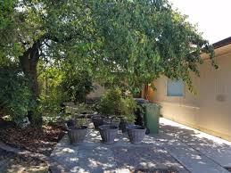 Real Estate For Sale 841 841 Stevens Way Lodi Ca For Sale 279 950 Homes Com
