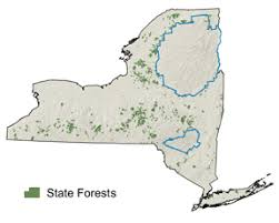 map of state of ny state forests nys dept of environmental conservation