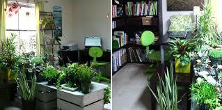 home garden interior design gardening in unusual spaces