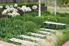 Shady Garden Ideas An Attractive Shady Garden With Ferns Hostas And Agapanthus