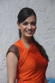 hair styling and dressing sense of dia mirza 9 fashion