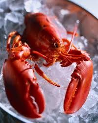 Rhode Island Lobster Buffet golocalprov the best 5 lobster dishes in rhode island