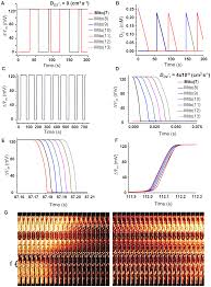 a reaction diffusion model of ros induced ros release in a