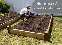 raised vegetable garden beds dunneiv org
