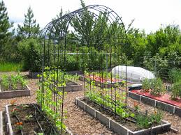 pole bean trellis idea susan u0027s in the garden
