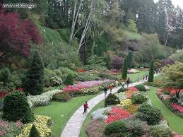 nature the butchart gardens picture nr 4493