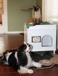 Decorative Cat Box Decorative Litter Box Enclosures Foter