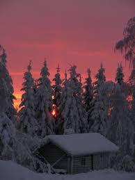 167 winter wonderland images winter wonderland