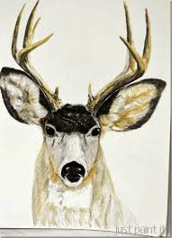 a deer sketch with colored pencils just paint it blog