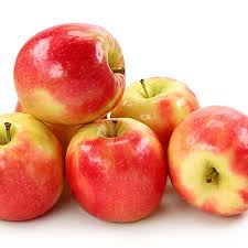 low chill pink apple trees for sale fast growing trees
