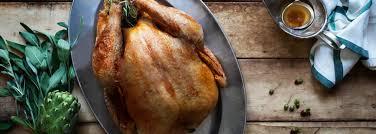Thanksgiving Turkey Delivery Free Range Turkey
