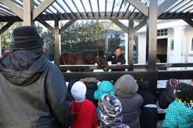 free winter field trips at the museum kentucky derby museum