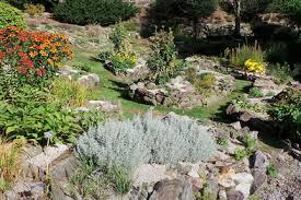 rock gardening rhs gardening