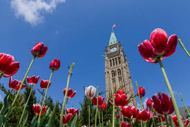 get settled in canada in 8 simple steps national bank