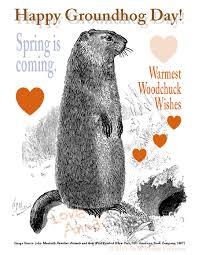groundhog day cards groundhog day annalogous