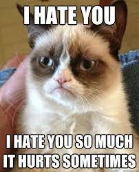 I Hate You Meme - i hate you i hate you cat meme cat planet cat planet