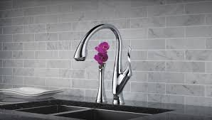 Kitchen Faucet Manufacturers Decor Brizo Kitchen Faucets Brizo Tresa Kitchen Faucet