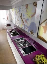purple kitchen finish with astonishing inspiration home987