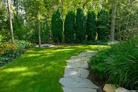 Drainage Problems In Backyard - yard drainage problems houzz