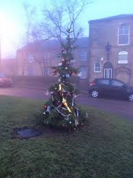 the 13 worst christmas trees in britain
