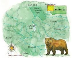 Map Of Missoula Montana by Grizzly Bears Are Making A Comeback U2014and Making Their Human