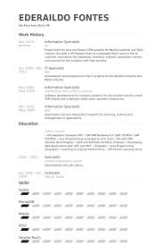 Aviation Resume Examples by Information Specialist Resume Samples Visualcv Resume Samples