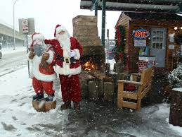 christmas trees twin cities christmas tree retail lots bj trees