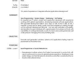 Individual Software Resume Maker I3 Wp Com Www Themagus Jp Com Wp Content Uploads C