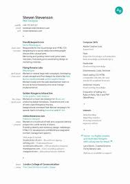 graphic design resume layouts graphic design resume lovely top graphic design resume exles