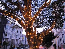 outdoor tree lights ideas home design how to use string on