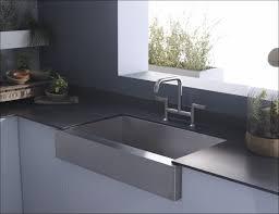 blanco kitchen faucet reviews kitchen rooms ideas fabulous blanco kitchen faucets kohler