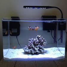 designer aquarium fish tank manufacturer from lucknow