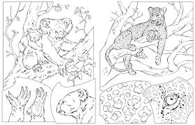 free animal coloring pages national geographic coloring pages ideas