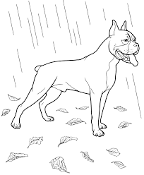 dog coloring pages printable coloringstar