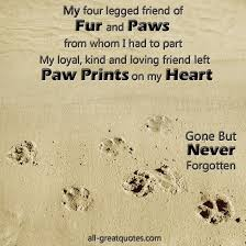 loss of dog losing a dog quotes delectable 17 best pet loss quotes on