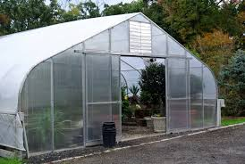 The Pants Barn Storing My Tropical Plants For The Winter The Martha Stewart Blog