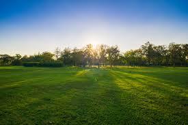 Reno Green Landscaping by Fertilizing Tips Antonucci Lawn And Garden Reno Nv