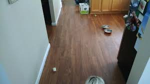 home depot black friday armstrong once done floor cleaner tropical oak natural a6412 luxury vinyl