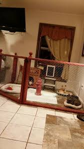 Dog House Interior Best 25 Indoor Dog Houses Ideas On Pinterest Indoor Dog Rooms