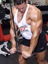 How To Increase Bench Max Increase Bench Press Bench Press Net
