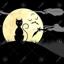 black cat halloween background halloween background with black cat bats und shiny full moon