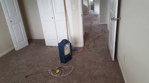 Area Rug Cleaning Portland by Affordable Carpet Cleaning Deals Gladstone Or Youtube