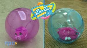 zhu zhu pets adventure ball spin master