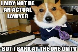 Lawyer Dog Memes - asking for a lawyer dog is not the same as asking for a lawyer