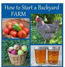 how to start a backyard farm