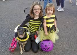 Balboa Park Halloween Activities by Halloween Events In And Around Oceanside Visit Oceanside