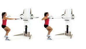 Leg Lift Bench Bench 1 Leg Bench Squat Leg Squat Ring To Bench Squat Neuracels