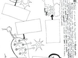 Water Cycle Coloring Page Water Cycle Coloring Page Free Printable Photosynthesis Coloring Page