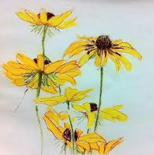 25 unique pencil drawings of flowers ideas on pinterest color