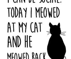 Awesome Quotes About Cats Being - quotes about cats inspiration 65 cute quotes about cats animalwised